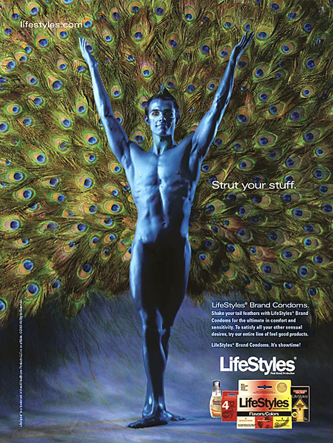 LifeStyles-Peacock
